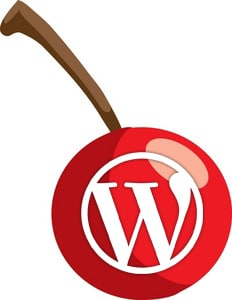 best wordpress plugins cherry on top