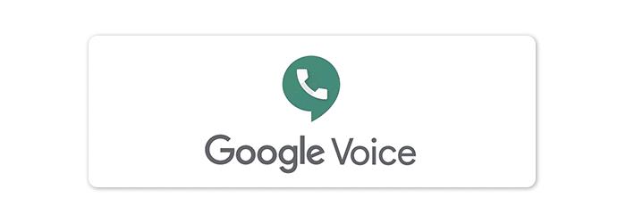 google voice business